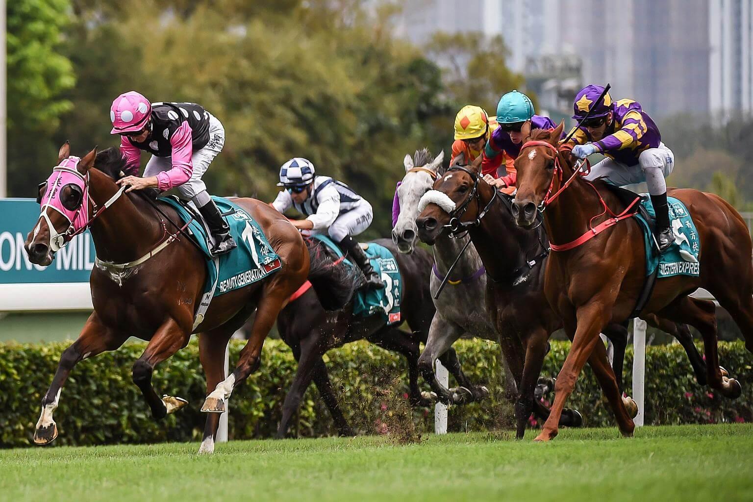 Singapore Horse Racing Live Odds